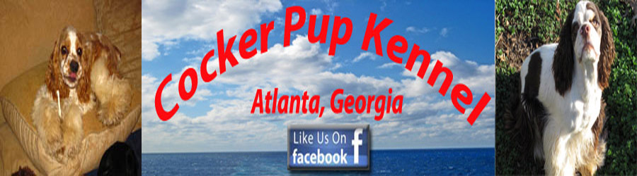 Cocker Pup Kennel logo, a Small Hobby AKC Cocker Spaniel Breeder in Georgia